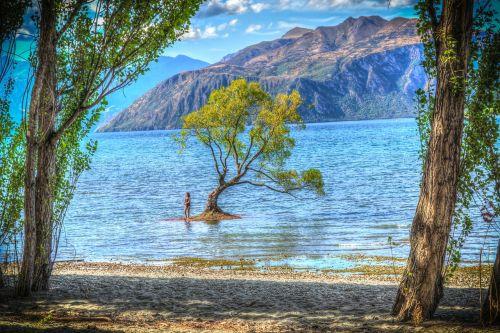 wanaka new zealand lake wanaka