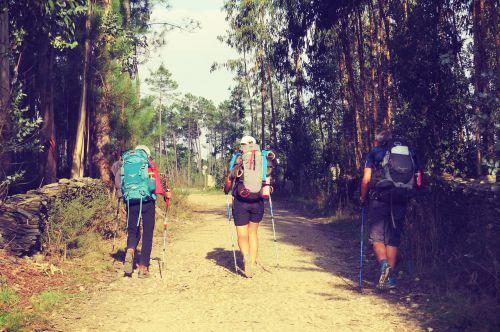 wandern jakobsweg reise