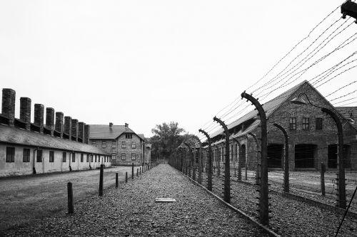 war fence military arm