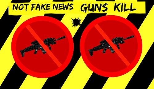 warning  fake news  gun control