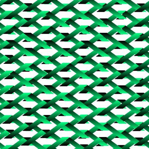 Warped Net