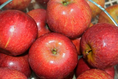Washed Red Apples