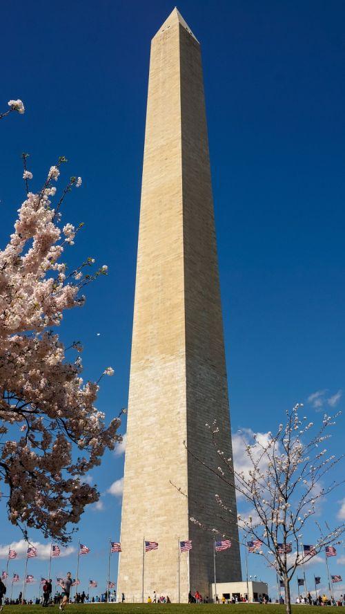 Vašingtono paminklas,Vašingtonas,paminklas,paminklas,usa,žvilgsnis,turizmas,ekskursijos,bokštas,istorinis,pavasaris