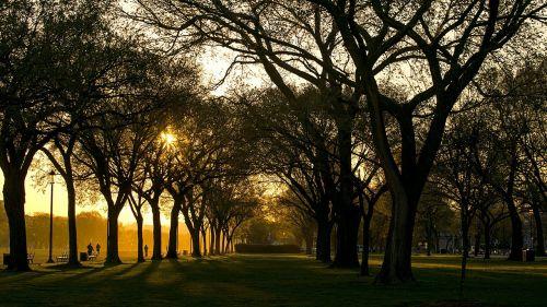 washington dc morning sun
