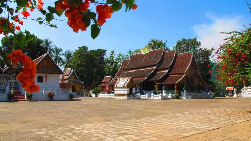 wat xieng thong buddhist temple temple