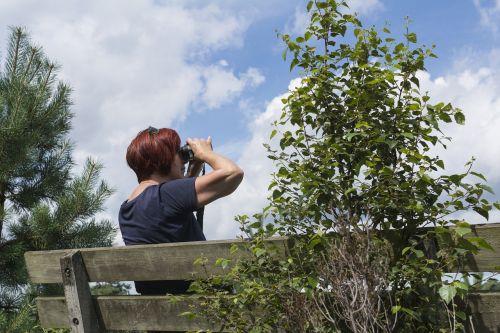 watch study nature