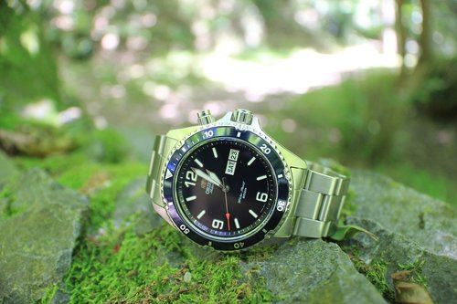 watch  nature  blue