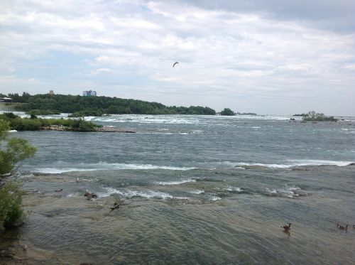 water niagara falls river