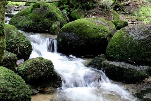 water stones moss