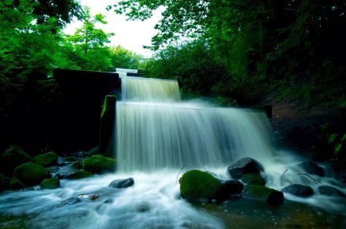 vanduo,krioklys,hamburgas,kraštovaizdis,srautas,gamta,upė,akmenys,murmur,riaumojantis krioklys,mažas krioklys,botanikos sodas