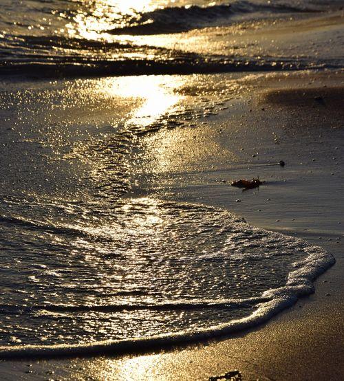 water wave beach