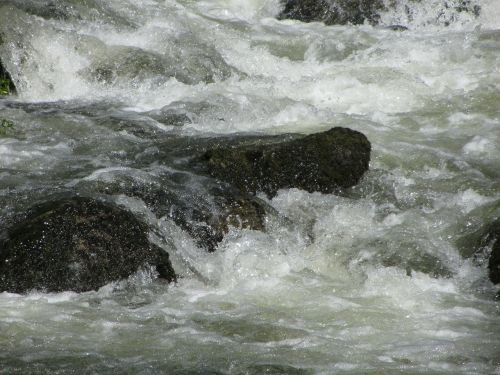 water bach stones