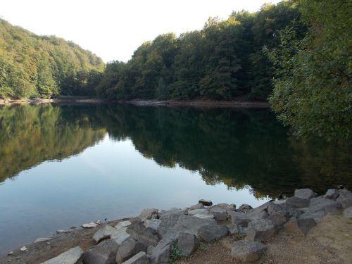 vanduo,medis,slovakija,ramybė,saulė,Šalis,gamta,veidrodis,akmenys,pleso,vasara,Rokas,žalias,atsipalaiduoti,atspindys,miškas