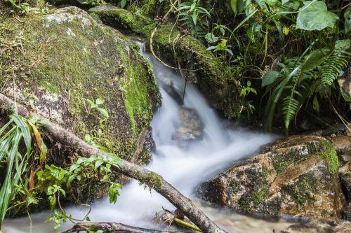 water brook natural water