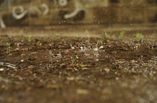 water drip drop of water