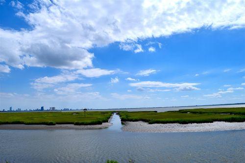 water coastline marshland