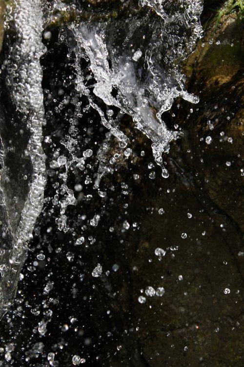 water splash drop
