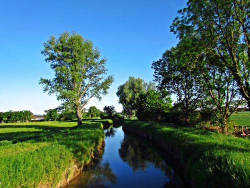 water brook the brook