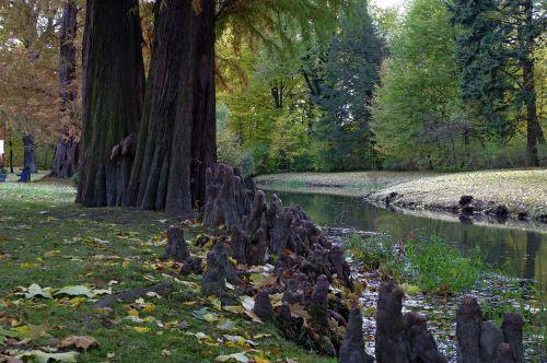 water park autumn