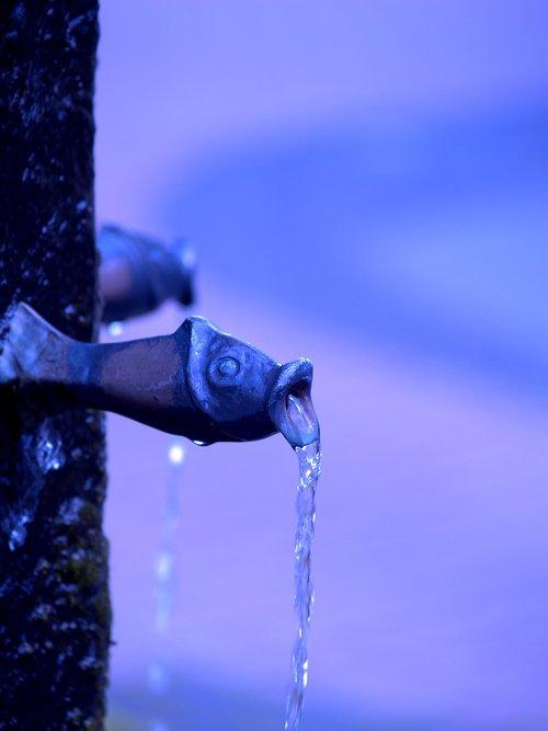 water  pearl  wet