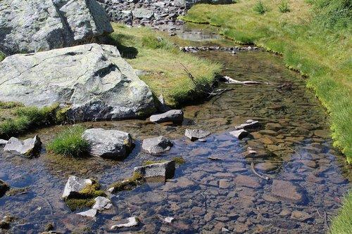 water  creek  nature