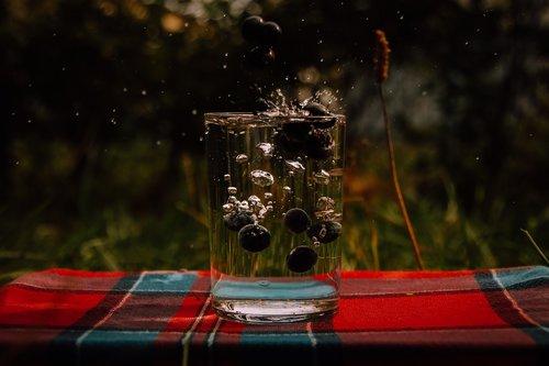 water  berries  cup