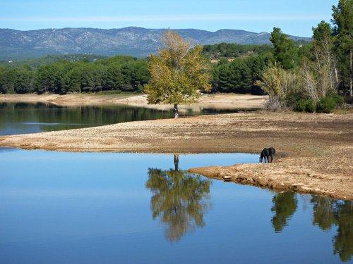 water  reflection  lake