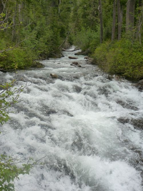 water creek mt rainier