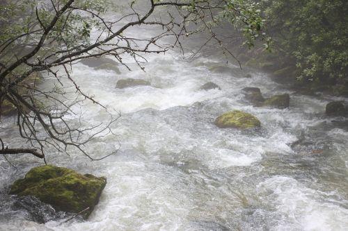 water haze nature