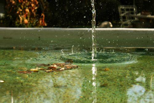 water drops drop