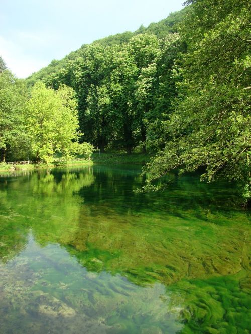 water lake nature