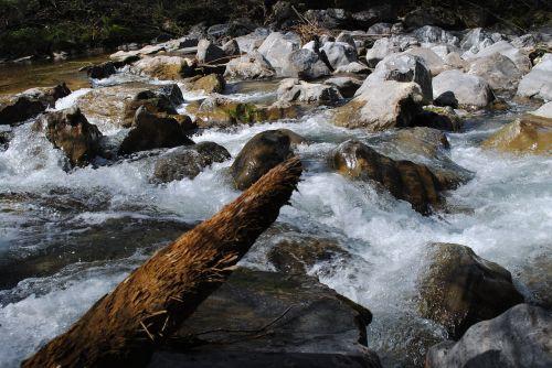 water log river