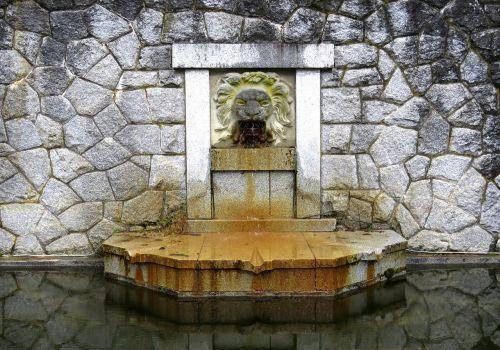 water fountain lion fountain