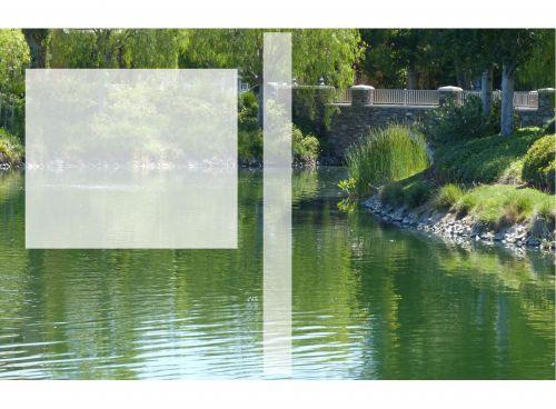 Water Garden Book Cover