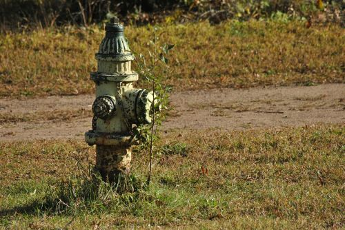 water hydrant hydrant fire hydrant