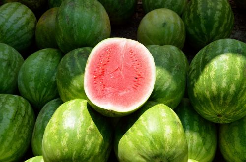 water melon fruit sweet