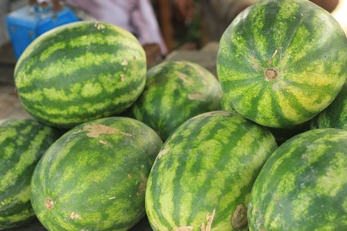 water melons  fruit  fresh