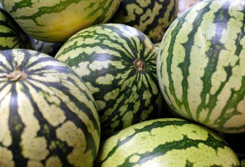 water melons  melon  fruit