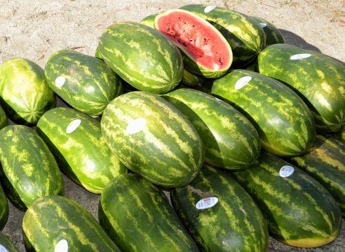 turgus, ūkis, parduotuvė, pardavimas, pirkti, Žemdirbystė, žalias, mityba, sezoninis, oranžinė, salotos, skvošas, sezonas, grupė, bakalėja, žolė, fonas, mityba, sveikata, derlius, maistas, mažmeninė prekyba, žaliavinis, pagaminti, natūralus, parduoti, mažmeninė, ekologiškas, sveikas, augalas, krepšelis, vandens melionai parduoti