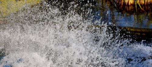 water splashes bubble water