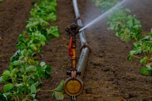 water sprinklers water jet artificial