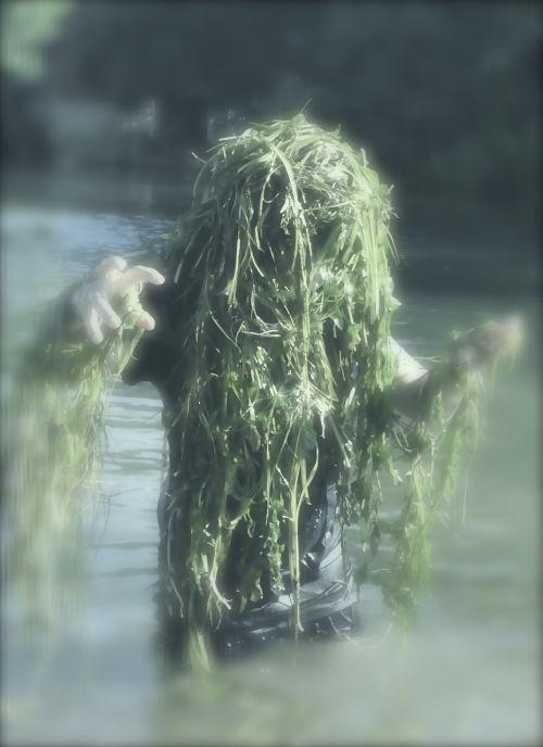 water sprite aquarius seaweed