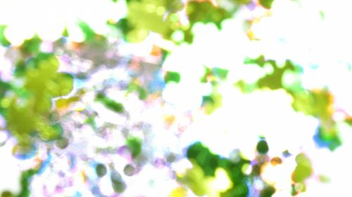Watercolor Splash Green