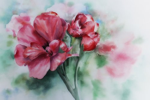 watercolour  painting  art