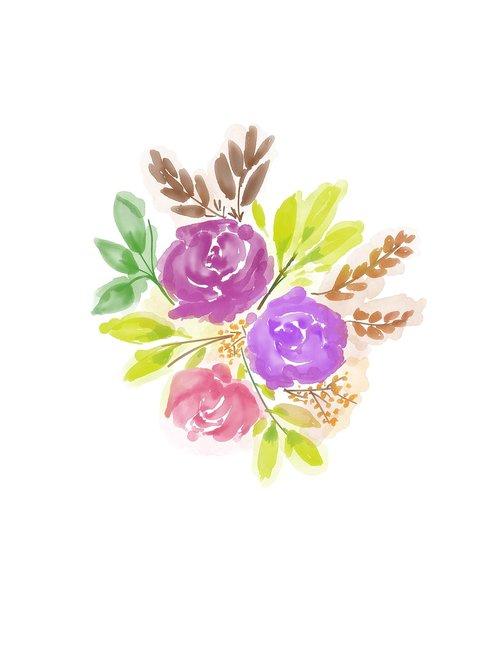 watercolour flower  rose  watercolor