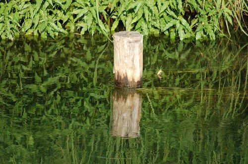 watercourse  palo  channel