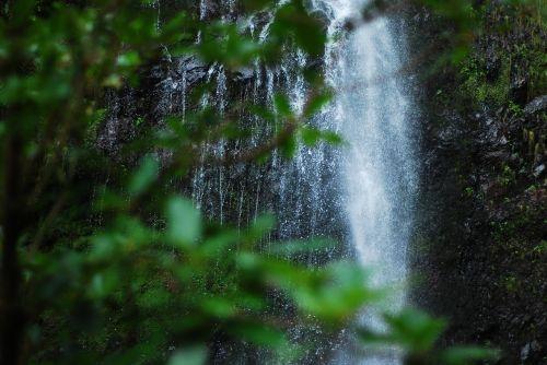waterfall greenery mountain
