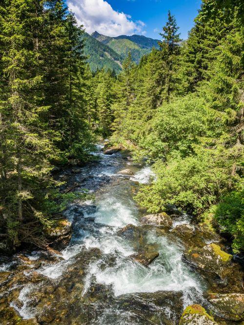 krioklys,kalnai,srautas,vanduo,miškas,baltas vanduo,kalnų upelis,skaidrus vanduo,kriokliai,kraštovaizdis