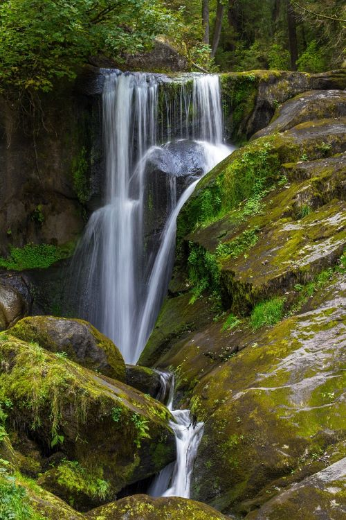 waterfall forest water flow