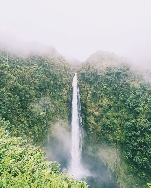 waterfall,nature,green,trees,plant,mountain,hill,landscape,travel,adventure